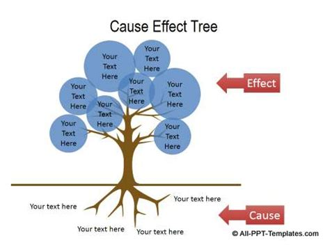 Cause and effect organization essay